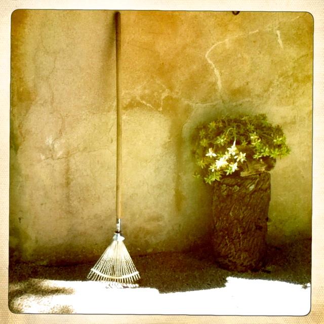 ein schöner Garten gehört zur Casa Mona