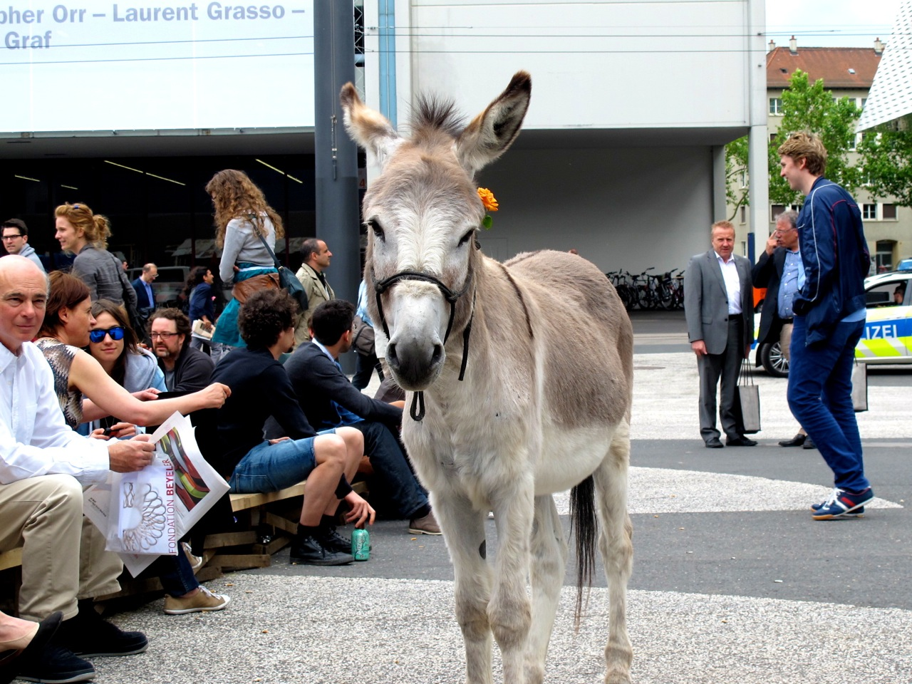 Esel auf der Art Basel