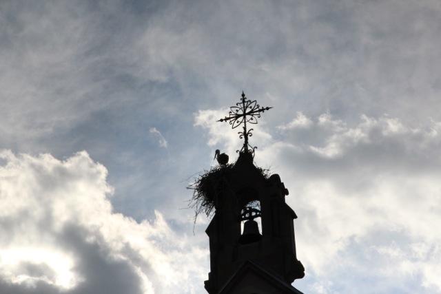Storch nistet auf dem Kirchturm