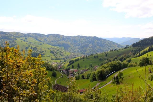 das Panorama von Wieden