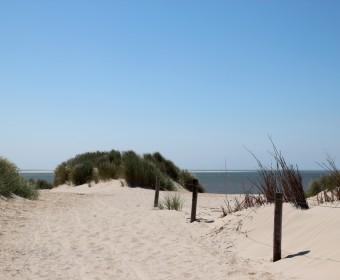 Tour_Holland_Ameland_Strand_Hollum_pushreset