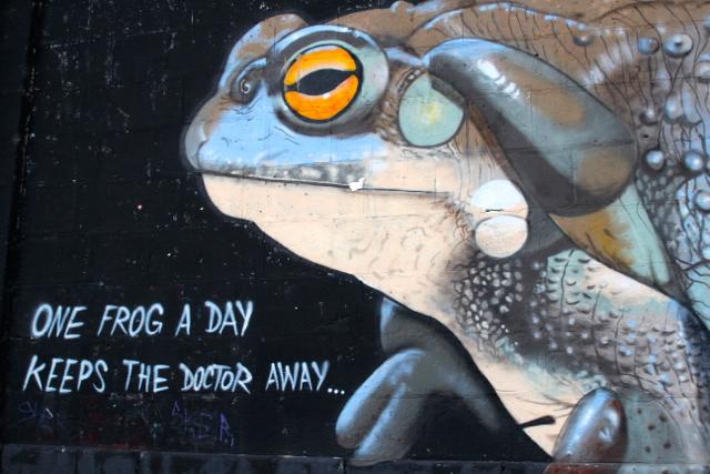 Froschgraffiti in Wien