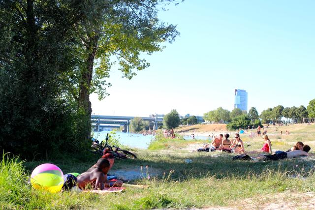 chillen an der Neuen Donau