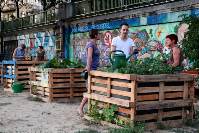 Urban Gardening in Wien