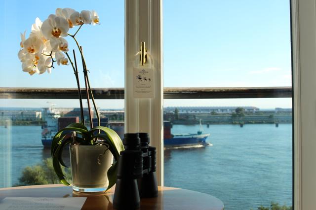 Ausblick mit Orchidee