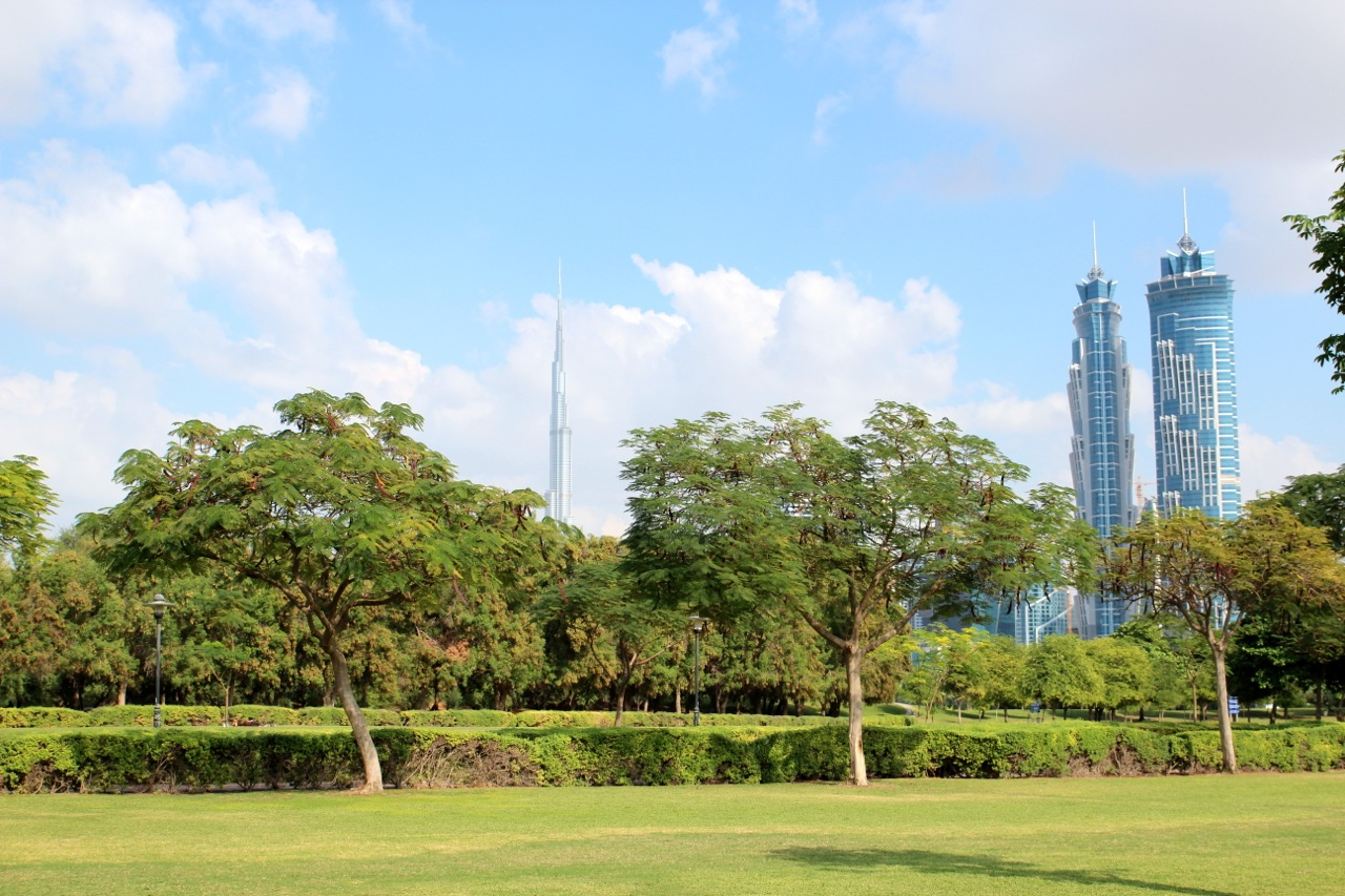 der grüne Safa Park