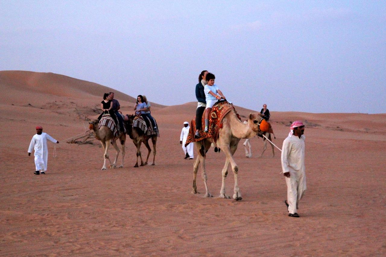 Wüstenritt auf vier Beinen
