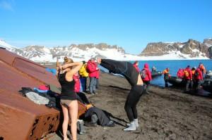 wir werden es wagen – den Sprung ins Südpolar-Meer