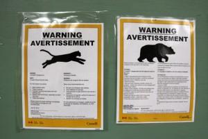 Bären- und Pumawarnung auf dem Zeltplatz