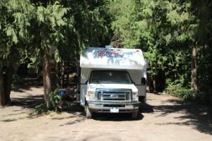 Ein Platz unter hohen Bäumen am White Lake