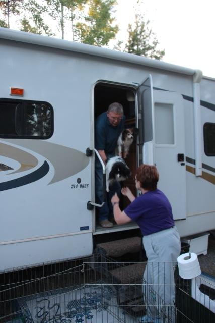 12 Hunde passen in den Camper  von Brenda