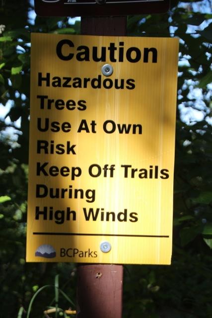 Risiko Bäume am Ten Mile Lake