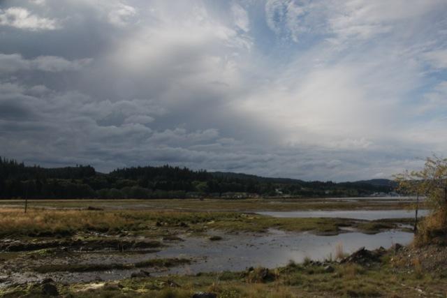 Port Hardy und der Regen