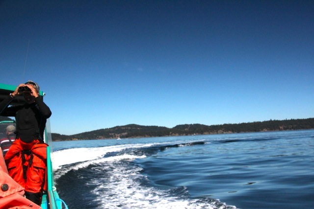 Dirk an Bord unserer Whale-Watching-Tour