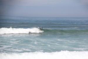 die Surfer jagen jeder Welle hinterher