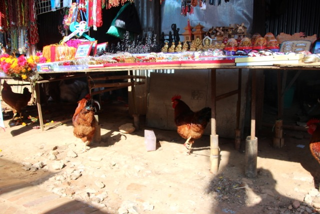 Hühner als Opfergabe