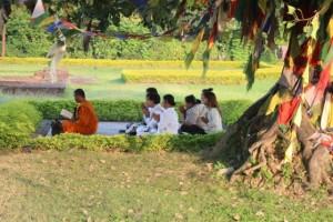 unter dem Bodhi-Bäumen wird gemeinsam meditiert