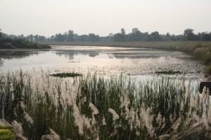 der Fluss in Lumbini