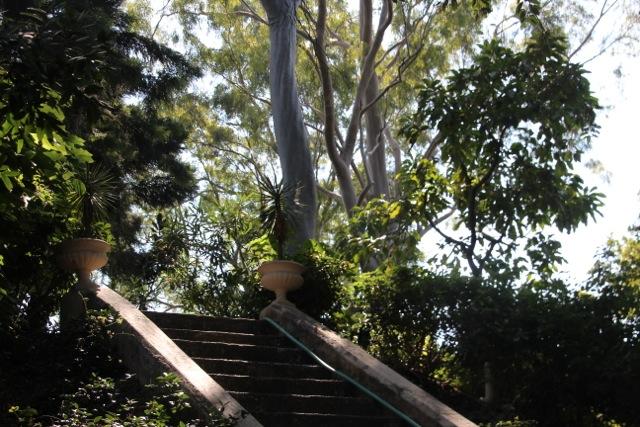 ein wundervoller Park gehört mit zum Anwesen