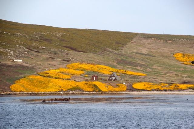 einige wenige Häuser finden sich auf der Insel
