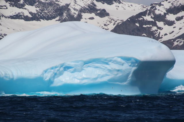 der erste Eisberg löst eine Welle der Begeisterung an Bord aus