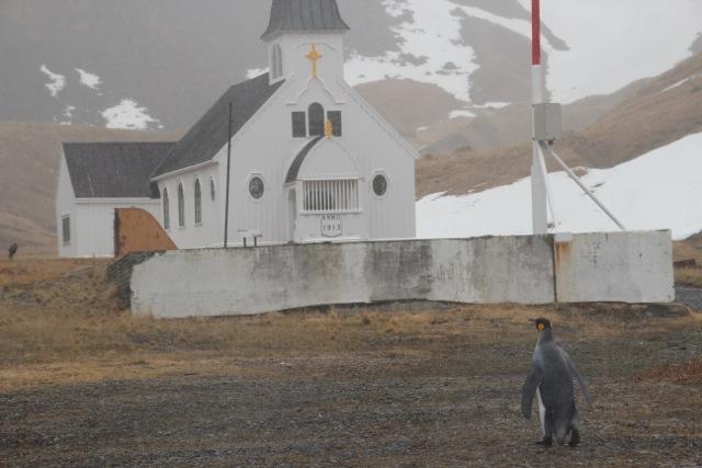 Geisterstadt im Südpolarmeer – Grytviken