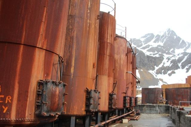 Doch nur zwischen den Tanks der 1904 von norwegischen Walfängern gegründeten Siedlung sind Besucher erlaubt