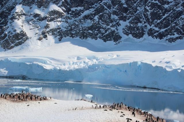 Eis und Pinguine – und krachende Gletscher