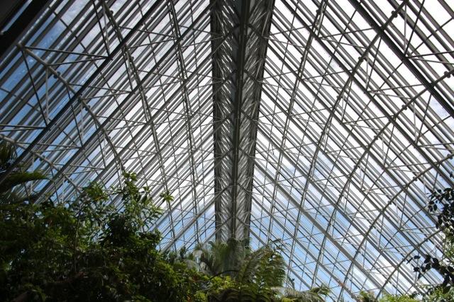 im Tropenhaus des sehr schönen Botanischen Gartens