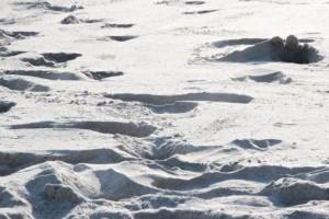 und weißer, feiner Sand