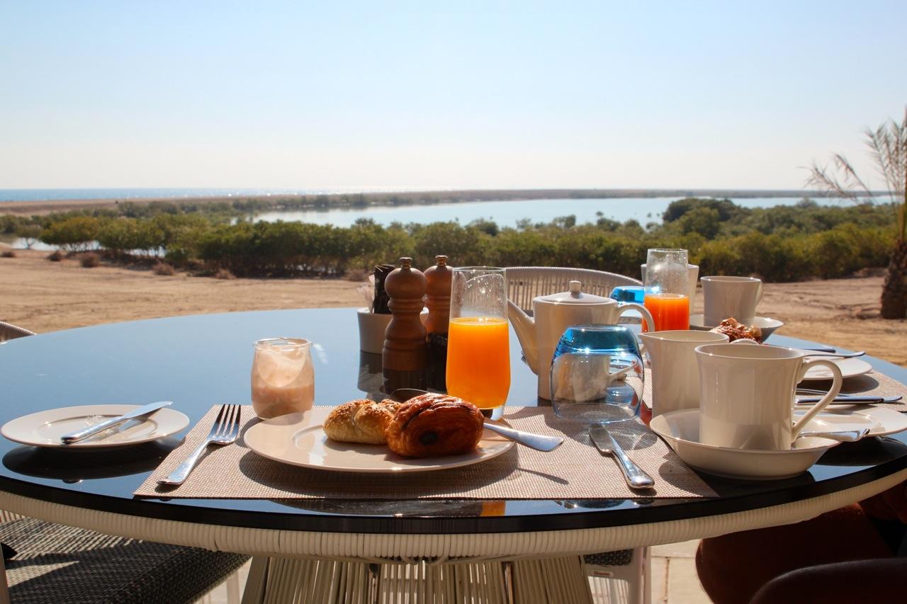 Frühstück mit Aussicht – Mangroven wachsen in der Bucht