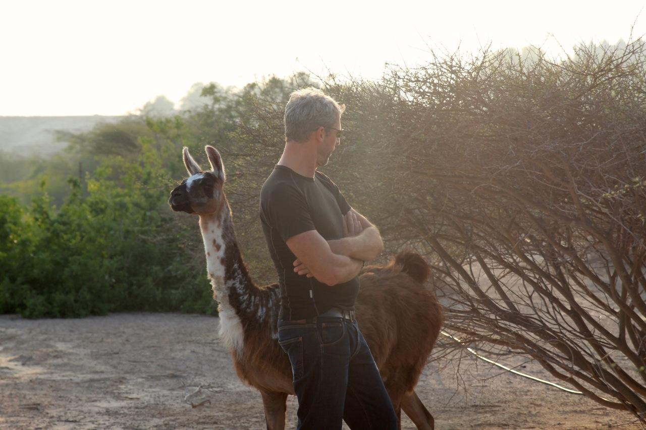 respektvolle Begrüßung zwischen Mensch und Tier