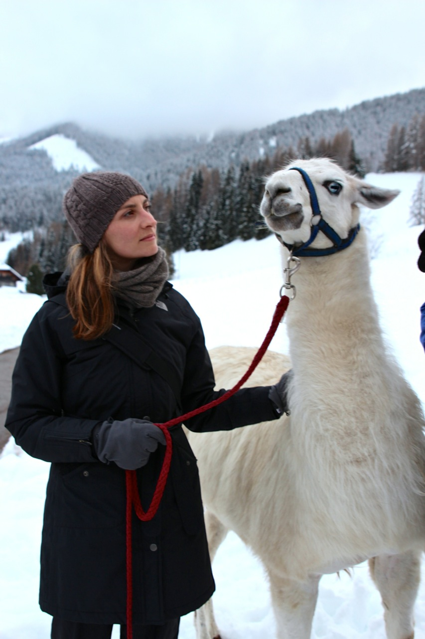 Susanne mit Lama Legolas