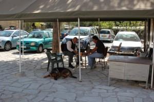 und Männer mit Hunden in Nikosia